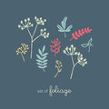 Set of flora and foliage Royalty Free Stock Photo