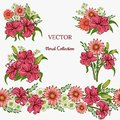 Set of the floral arrangements. Pink Lily and Hrizantema with green leaves. Vector romantic garden flowers. seamless line