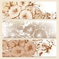Set of floral brochures in classic style with flowers vector banners for your design Stock Photography
