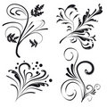 Set of floral design elements Royalty Free Stock Images