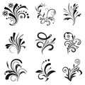 Set of floral design elements Stock Photography