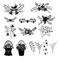 Set of floral design elements isolated over white Royalty Free Stock Photo