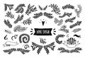 Set of Floral doodle collection Royalty Free Stock Photo