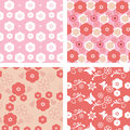 Set floral pattern blossom cherry Royalty Free Stock Photo