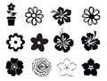 Set of flower illustrations summer on white silhouettes symbols Royalty Free Stock Images