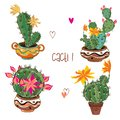 stock image of  Set of flowering cacti in clay pots. Vector