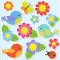 Set of flowers and birds Royalty Free Stock Photo