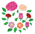 Set of flowers and leaves - vector