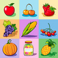 Set of food icons on the colorful backgrounds summer autumn harvest Royalty Free Stock Photo