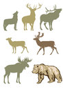 Set of forest animals Royalty Free Stock Photos