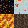 Set of four autumn leaves backgrounds patterned seamless Stock Photo