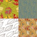 Set of four autumn leaves backgrounds patterned seamless Royalty Free Stock Photo