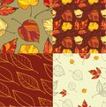 Set of four autumn leaves backgrounds patterned seamless Royalty Free Stock Photos