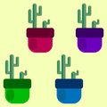 Set of four colored cacti in pots. vector illustration.