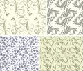Set of four gentle color floral seamless patterns