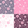 Set of four seamless patterns with flowers. Stock Photography