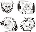 Set of framed cat sketches Royalty Free Stock Images