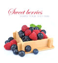 Set fresh berries in box Stock Photos