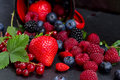 Set of  fresh berries Royalty Free Stock Photo