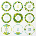 Set of fresh green leaves vector frame. Nature border background