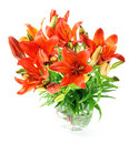 Set fresh orange lilly summer flowers Stock Photos