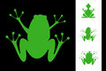 Set of frogs illustration green Royalty Free Stock Photo