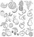 Set from fruit and berries drawing sketch graphic Royalty Free Stock Photography