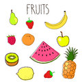 Set of fruit doodles hand drawn vector illustration fruits Stock Image