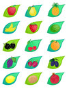 Set fruit icons Stock Photo