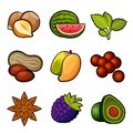 Set of fruit icons Stock Image