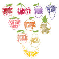 Set of fruit labels items uniquely illustrated that are ideal for restaurant menus natural juice flavor depictions or can be used Stock Images