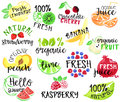 Set of fruit labels and stickers