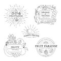 Set of fruits badges, logos and design elements.