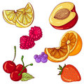 Set of fruits on white background