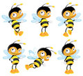 Set funny bee Royalty Free Stock Photo