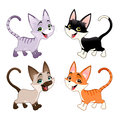 Set of funny cats vector isolated animals Stock Image