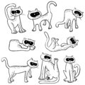 Set with funny doodle cats. Collection with domestic pets in inc