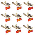 Set of funny flying birds with information about d Royalty Free Stock Image