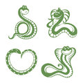 Set of funny snakes Royalty Free Stock Photo