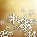 Set of golden christmas background. Royalty Free Stock Photography