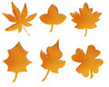Set of golden pattern autumn leaves Royalty Free Stock Photo