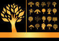 Set of golden tree silhouettes for your design Royalty Free Stock Photography
