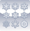 Set of graceful snowflakes. Stock Images