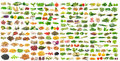 Set of grains and vegetable on white background a Stock Photography