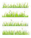 Set grass three samples for different uses vector image Royalty Free Stock Image