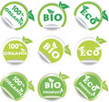 Set of green bio and eco stickers Royalty Free Stock Photo