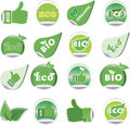 Set of green BIO and ECO stickers. Royalty Free Stock Photo