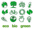 Set of green eco & bio icons, stickers and tags Royalty Free Stock Images
