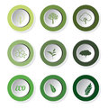 Set of green eco leaf round buttons, vector Royalty Free Stock Photo