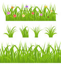 Set green grass isolated on white background Royalty Free Stock Photo